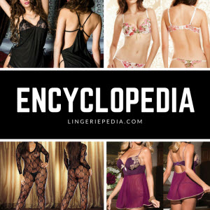 lingerie's encyclopedia