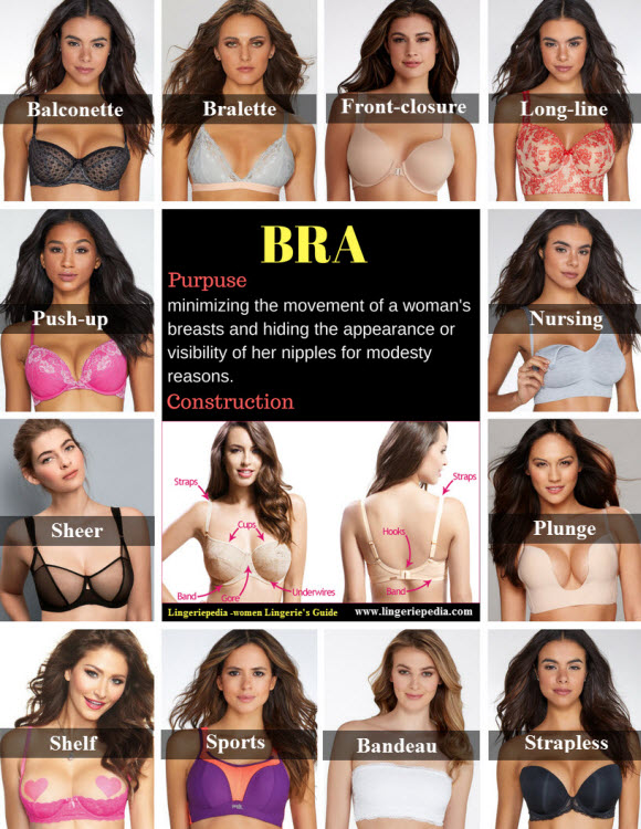 infographic show what is bra types